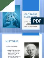 GLOSARIO FLEISCHNER organizado