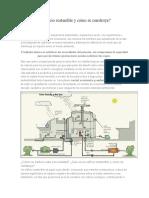 ¿Qué Es Un Edificio Sostenible y Cómo Se Construye