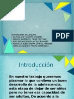 Info Integradora