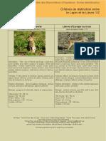 Lapin Lièvre.pdf