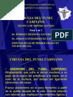 tunel_carpiano_rdguez_1[1]