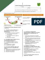integrativa 1° medio biol