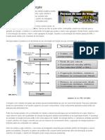 Formas de uso do biogás - Portal do Biogás.pdf