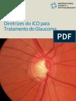 ICO Glaucoma Guidelines Portuguese