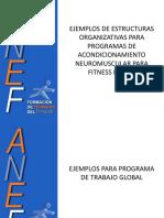 2.1-+EJEMPLOS+DE+ORGANIZACIONES+METODOL$C3$93GICAS+FITNESS+BASICO