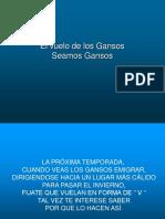 Vuelo de Los Gansos4