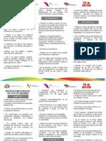 Informacion Triptico Listo2
