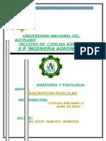 Universidad Nacional Del Altiplano Topo