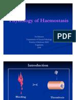 Physiology of Haemostasis PPDS I 2008