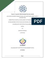 Final Sip Report_kundan Kumar PDF