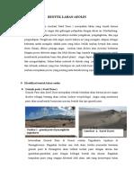 Bentuk Lahan Aeolin ( Sand Dune )