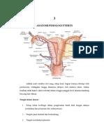 Otot-otot Uterus No. 3