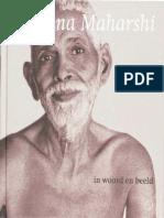 Greenblatt, Matthew - Ramana Maharshi in woord en beeld