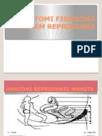 anatomifisiologisistemreproduksi-120112003922-phpapp02.pptx
