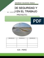 PLAN SST.pdf