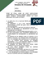 Despertar de Ifa.pdf
