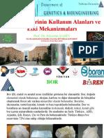 Prof Dr Fikrettin SAHIN 2