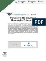 Pervasive BI - Driving a More Agile Enterprise