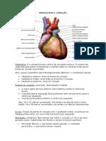 3-mediastino e coração.docx
