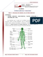 11 Organizacion General Del Sistema Nervioso