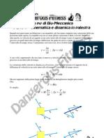 Biomeccanica Di Base - 2 - Cinematic A e Dinamica in Palestra