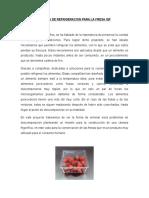 Proyecto Refrigeracion Camara Para Fresa Iqf