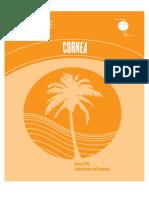 AAO - Cornea - 2011-Consensus and Controversies