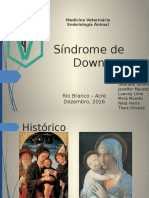 Síndrome de Down - Embriologia Veterinária 2.pptx.pptx