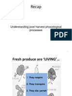 Postharvest-Technology-Lecture-3a.pdf