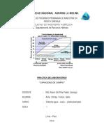 Capacidad de Campo - Informe