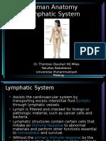 Anatomi (KULIAH LYMPHOID)