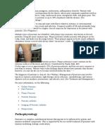 13. Psoriasis