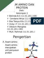 Power Point Asam Amino Dan Protein