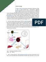 GLP-1anti-Diabetes Drug Development Global Market Development_Accordingto patent clinical-status