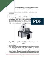 Microscopio Electrónico de Barrido ZnO