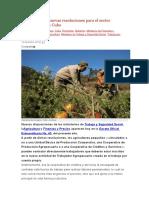 REFORMAS Dan a Conocer Nuevas Resoluciones Para El Sector Agropecuario en Cuba