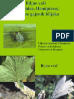 Biljne Vasi(2)mkm