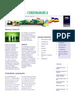Brochure Acopi Bogota 2013