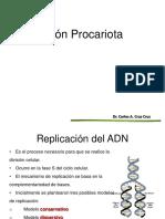 Replicación de Procariotas