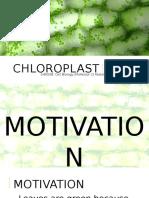 Cell Bio Chloroplast
