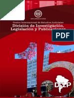 Revista 15 Años DILP
