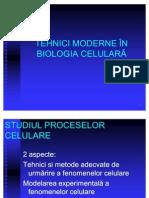 Tehnici_moderne