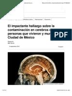 Cerebro Contaminacion