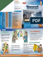 diferencias  entre tsunami y maremoto  defenza civil.pdf