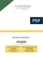 Metabol Anab (FisMik)
