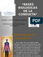 basesbiologicasdelaconducta-RESUMEN