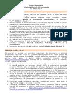 Cerinta Proiect Semestrial Individual_ID_PMP 2016