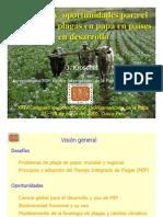 Desafíos y oportunidades para el manejo de plagas en papa en países en desarrollo (PowerPoint)