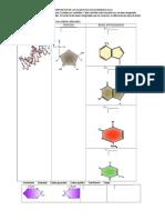 Acidos nucleicos y biomoleculas.docx