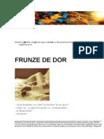 Frunze de Dor(Carte de Vizita)